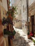 Stara grodzka ulica z kwiatami obraz stock