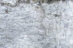 Stara grungy tekstura, popielata betonowa ściana z mech obrazy stock