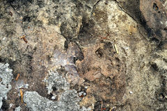 Stara kamień tekstura Zdjęcia Royalty Free