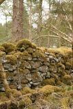 Stara kamienna ściana Obrazy Stock