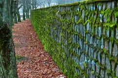 Stara kamienna ściana Obraz Royalty Free