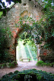 stara kościelna dżungla Zdjęcie Royalty Free