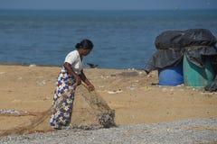 Stara kobieta suszy małej ryba na plaży Zdjęcia Stock
