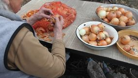 Stara kobieta z szarym w?osy podnosi w g?r? cebul przed gotowa? w kuchni, organicznie warzywa, jej sw?j uprawa zdjęcie wideo