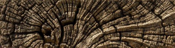 Stara krakingowa drewniana zakończenie tekstura zdjęcie stock