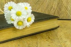 Stara książka na nieociosanej drewnianej desce Zdjęcia Stock