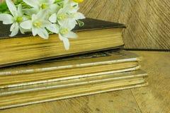 Stara książka na nieociosanej drewnianej desce Obraz Royalty Free