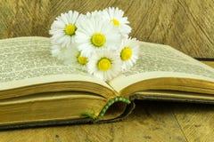 Stara książka na nieociosanej drewnianej desce Obrazy Royalty Free