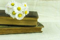 Stara książka na tkaniny tle Fotografia Royalty Free
