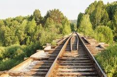 Stara linia kolejowa w lesie fotografia royalty free