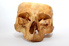 stara ludzka czaszka Zdjęcie Stock