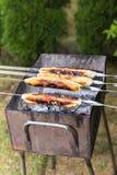 Stara mięsna wypiekowa metoda w cieście na pożarniczym węglu drzewnym zdjęcie royalty free