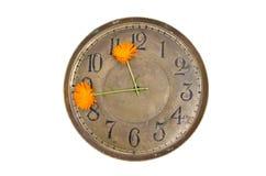 Stara mosiężna zegarowej twarzy tarcza z dwa nagietka kwiatu strzała Fotografia Stock