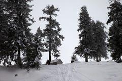 Stara mroźna drewniana buda i śnieżysty las w zima śniegu mou Zdjęcia Royalty Free