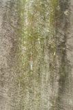 Stara nagrobek tekstura zdjęcia stock