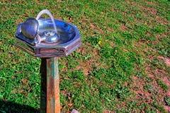 Stara, nieociosana, wodna fontanna z trawiastym tłem, obraz stock