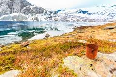 Stara ośniedziała puszka na jeziornym brzeg Ziemska ekologia obrazy royalty free