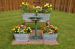 Stara obmycie balia pełno kolorowi kwiaty Obraz Royalty Free