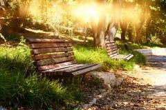Stara osamotniona ławka w spokojnym parku przy zmierzchu światłem Zdjęcia Royalty Free