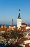 stara panorama Tallinn Zdjęcia Stock