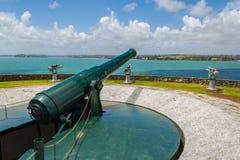 Stara pistolet formacja na północy głowie Auckland Nowa Zelandia obrazy stock