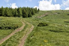 Stara Planina mountain Stock Image