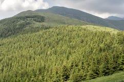 Stara Planina mountain Stock Photos