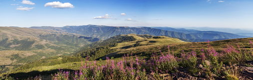 Stara planina mountain in Serbia Royalty Free Stock Photography