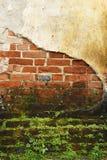 Stara pleśniowa cegły ściana zdjęcie stock