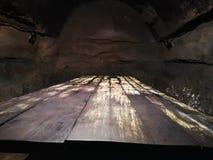 Stara pleśniowa drewno masa zdjęcia stock