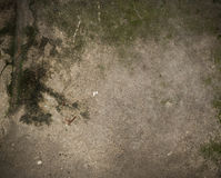 Stara pobrudzona będąca ubranym betonowa podłoga Fotografia Royalty Free