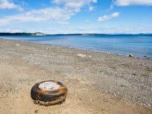 Stara samochodowa opona na skalistej plaży Zdjęcia Royalty Free