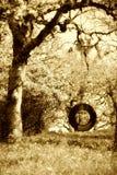 stara sepiowa huśtawkowa opony Zdjęcie Royalty Free