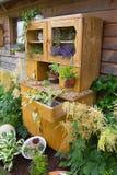 Stara spiżarnia z kwiatu dorośnięciem wśrodku go Zdjęcie Stock
