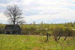 Stara stajni scena w zachodnim Rosja nieociosany stary rolny budynek stary wieśniak barn Pskov oblast, północnego zachodu Rosja c Zdjęcie Royalty Free
