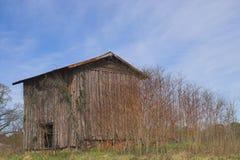 stara stodoła tytoniu Obrazy Stock