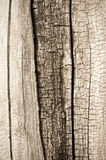 stara struktura drewniana zdjęcie royalty free