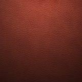 Stara syntetyczna skóra Zdjęcia Royalty Free