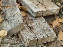 Stara tarcica i liście zdjęcia stock