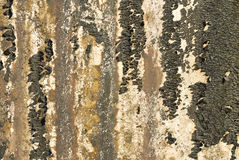 Stara textured ściana z foremką Obrazy Royalty Free
