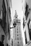 Seville zdjęcie stock