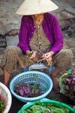 Stara wietnamczyk kobieta przy ulicznym rynkiem, Wietnam Zdjęcie Royalty Free