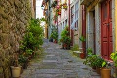 Stara wygodna ulica z historycznymi budynkami w pięknym miasteczku Porto, Portugalia zdjęcie stock