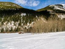 Stara Zaniechana kabina w zimie Zdjęcie Stock