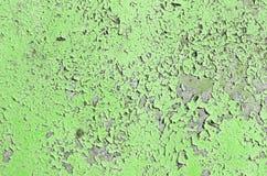 Stara zielona podława ściana Fotografia Stock