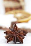 Staranises cinnamon sticks dried orange slices close up depth of field Stock Photo