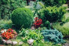 Staranny flowerbed w domu ogródzie obraz stock