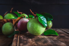 Starapples Royalty Free Stock Photos
