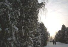 Staraya Russa 006 Stock Foto
