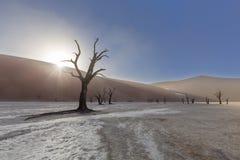 Starburst di Sun sopra la duna a Dooievlei Fotografia Stock Libera da Diritti